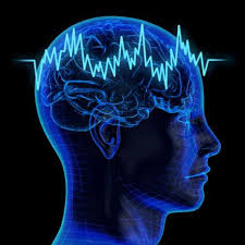 Brain Power Building